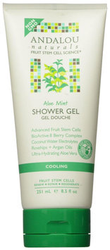 Andalou Naturals Cooling Shower Gel - Aloe Mint