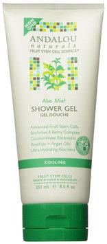 Andalou Naturals Cooling Shower Gel - Aloe Mint