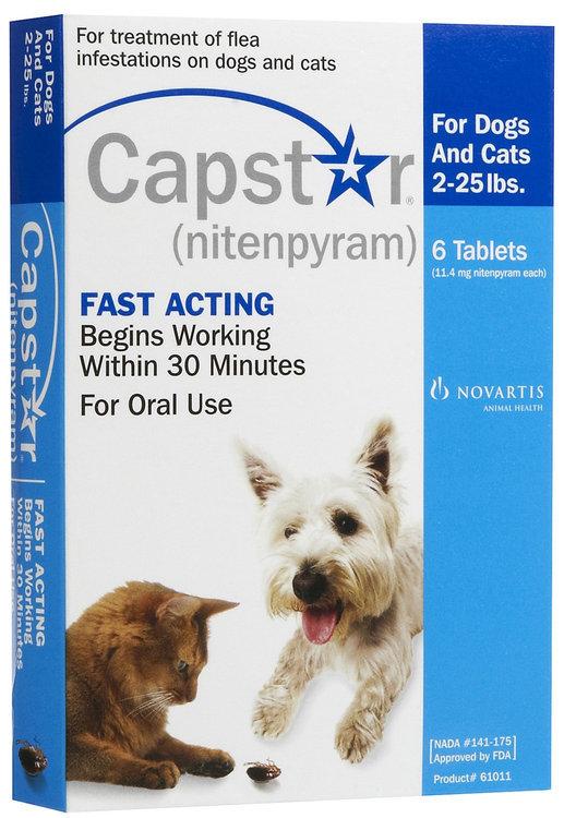 Capstar Flea Treatment Dog Flea Tick Care Reviews 2019