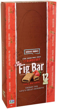 Nature's Bakery Whole Wheat Fig Bar, Strawberry, 2 Ounce (Pack of 12)