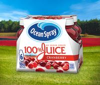 Ocean Spray 100% Juice Cranberry