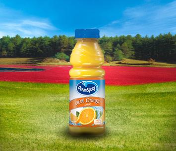 Ocean Spray 100% Orange Juice