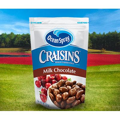 Ocean Spray Craisins Dried Cranberries Milk Chocolate