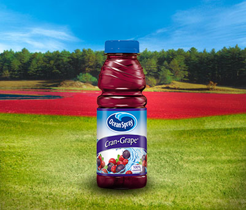 Ocean Spray Cran Grape Grape Cranberry Juice Drink