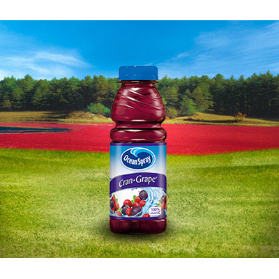 Ocean Spray Cran Grape Grape Cranberry Juice Drink