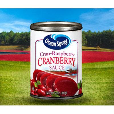 Ocean Spray Cran Raspberry Cranberry Sauce