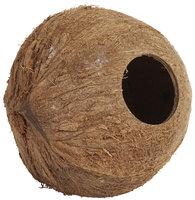 Penn Plax Coconut Cabana For Hamsters & Mice
