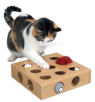 Smart Cat 3841 Peek and Play T