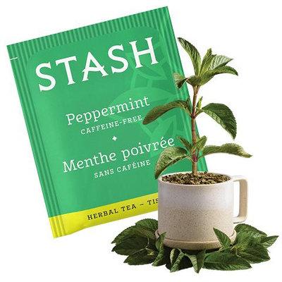 Stash Tea Peppermint Herbal Tea