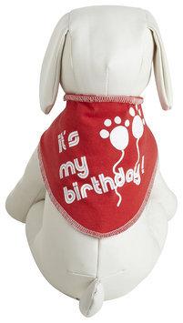 Ruff Ruff & Meow It's My Birthday Bandana