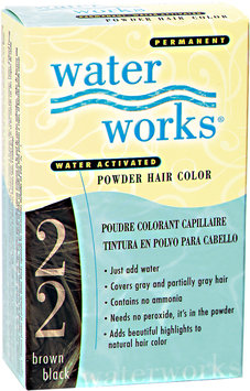 Water Works Permanent Powder Hair Color Brown Black