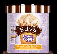 Dayer's/Edy's Slow Churned Frozen Yogurt Caramel Praline Perfection Ice Cream