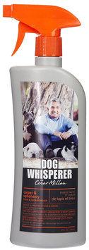 Dog Whisperer Carpet & Upholstery Stain and Odor Remover