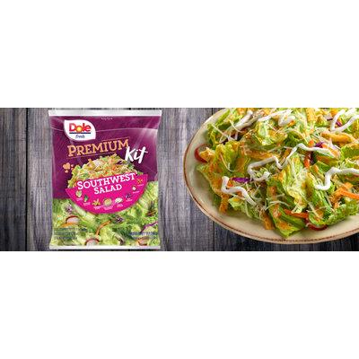 Dole Fresh Premium Southwest Salad Kit