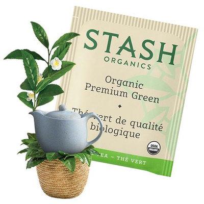 Stash Tea Organic Premium Green Tea