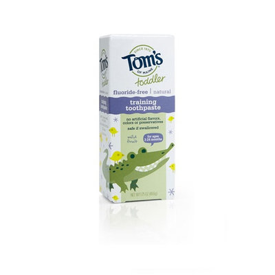 Tom's OF MAINE Mild Fruit Fluoride-Free Toddler Training Toothpaste