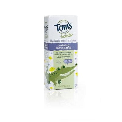 Tom's OF MAINE Mild Fruit Fluoride-Free Toddler Training Toothpaste
