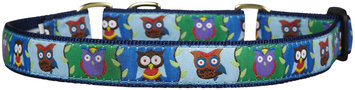Up Country Owl Martingale Dog Collar