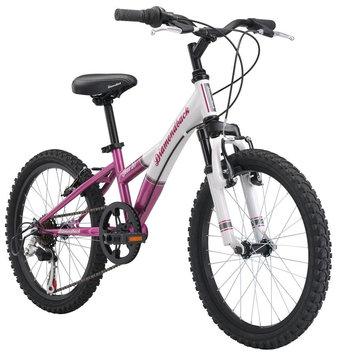 Diamondback 2015 Tess Youth Girls Hardtail Mountain Bike (20-inch Wheels)