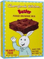 Cherrybrook Kitchen Fudge Brownie Mix With Chocolate Chips, 16 oz