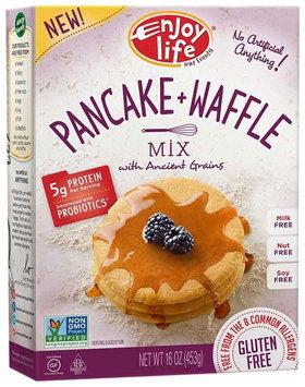 Enjoy Life PANCAKE & WAFFLE MIX, GF, (Pack of 6)