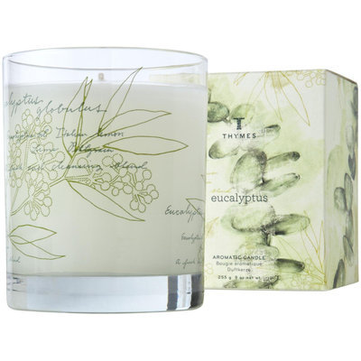 Thymes Poured Candle, Eucalyptus