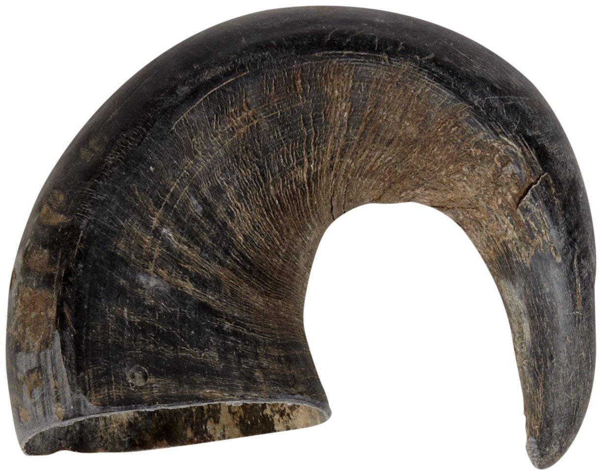 Aussie Naturals Natural Water Buffalo Horns Edible Treats