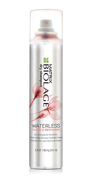 Matrix Biolage Waterless Dry Shampoo Clean Recharge Reviews 2019