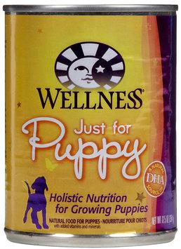 Wellpet Llc Wellpet OM08872 1212.5 oz Wellness Just for Puppy Food