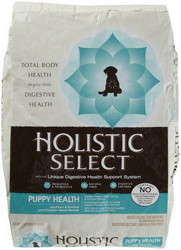 Wellpet Llc Mishawaka WP30911 15 lb. Holistic Puppy AnchovySardineSalmon
