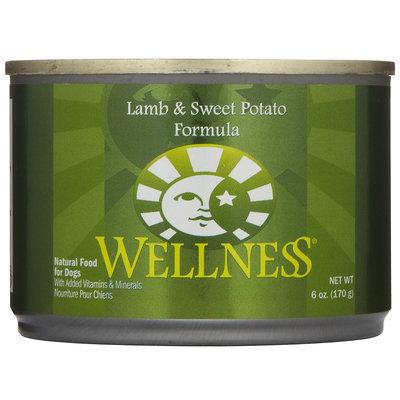 Wellpet Llc Wellpet OM08817 246 oz Wellness Lamb and Sweet Potato