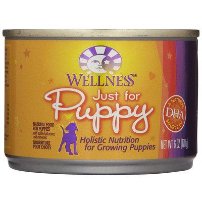 Wellpet Llc Wellpet OM08871 246 oz Wellness Just for Puppy Food