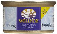 Wellness Complete Health Beef & Salmon - 24 x 3 oz
