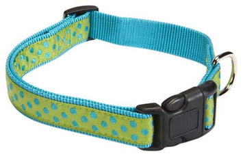 East Side Collection East Side Polka Dot Dog Collar 10 to 16in Green