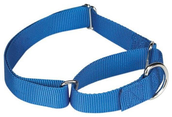 Guardian Gear Martingale Dog Collar 18 to 26in Blu
