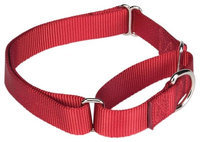 Guardian Gear Martingale Dog Collar 18 to 26in Red