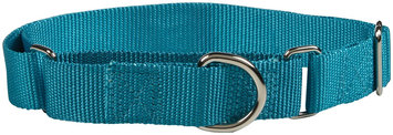Petedge Guardian Gear Martingale Dog Collar LG Blue