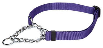 Petedge Guardian Gear Martingale Dog Collar MD Vio