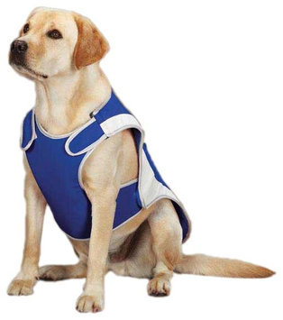 Guardian Gear Cool Pup Dog Coat Large