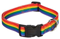 Petedge Casual Canine Puppy Pride Dog Collar 6 to 10in