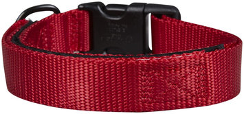 Petflect Co-Leash All-In-One Collar & Leash - Red