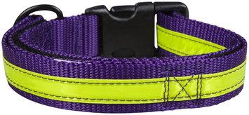 Petflect Co-Leash All-In-One Collar & Leash Night Lite - Purple