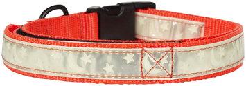 Petflect Co-Leash All-In-One Collar & Leash Night Glow - Orange