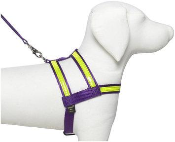 Petflect Co-Leash Night Lite Dog Harness - Size: Medium