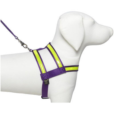 Petflect Co-Leash Night Lite Dog Harness - Size: Large