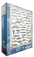 Eurographics Freshwater Fish Puzzle (1000 pcs)
