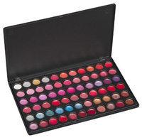 Coastal Scents 66 Piece Color Lip Palette
