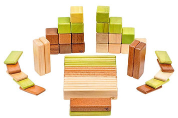 Tegu Original Set: Jungle Magnetic Blocks (52 pcs)