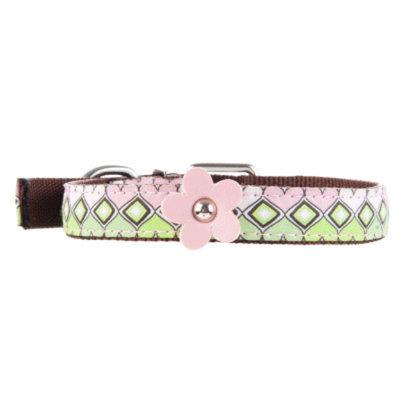 Top Paw Grace Dog Collar