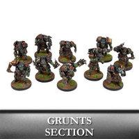 Warpath: Marauder Grunts Section